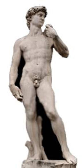 Michelangelo's David Statue - Lifesize Cardboard Cutout / Standee