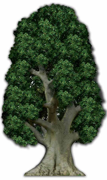 Large Tree cardboard cutout