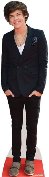 Harry Styles Cardboard Cutout