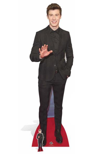 Shawn Mendes Cardboard Cutout