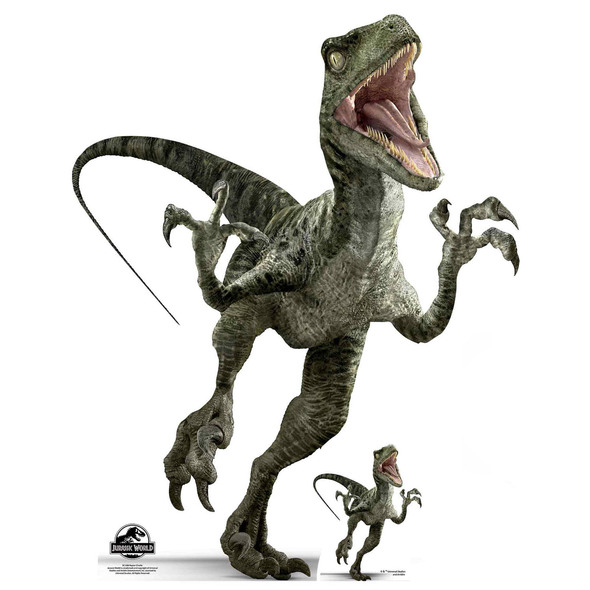 Velociraptor Charlie Official Jurassic World Lifesize Cardboard Cutout / Standee