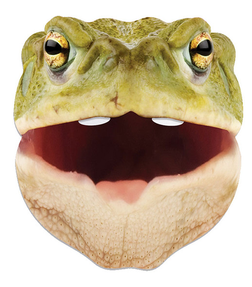 Toad Animal Single 2D Card Party Face Mask