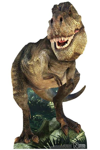 Tyrannosaurus Rex Dinosaur Natural History Museum Mini Cardboard Cutout
