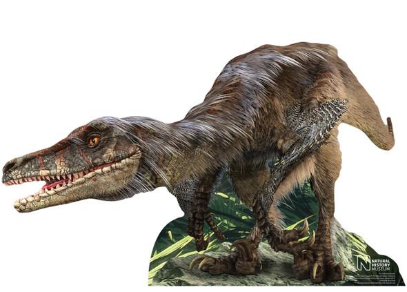 Velociraptor Dinosaur Natural History Museum Mini Cardboard Cutout