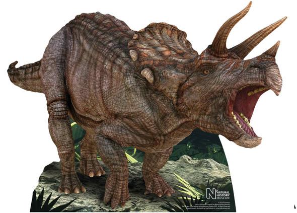 Triceratops Dinosaur Natural History Museum Mini Cardboard Cutout