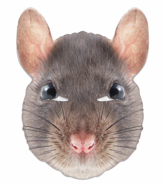 Rat Animal Single 2D Card Party Face Mask
