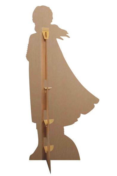 Rear of Anna Purple Coat from Frozen 2 Cardboard Cutout