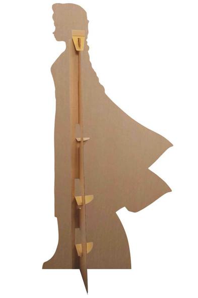 Rear of Elsa Magical Powers Cardboard Cutout