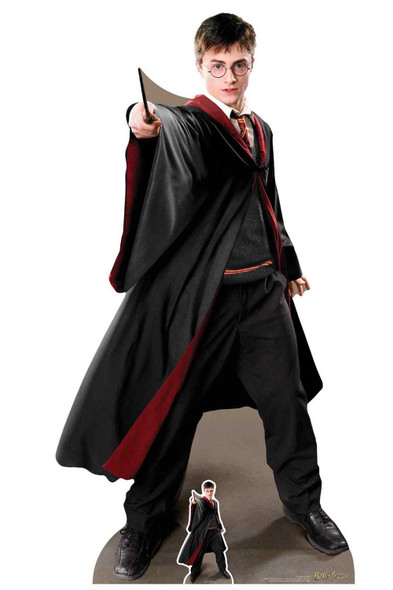 Harry Potter Quidditch Captain 2019 Lifesize Cardboard Cutout / Standup