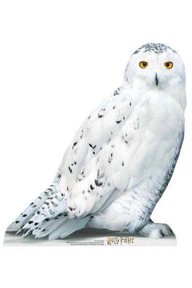 Hedwig Official Harry Potter Cardboard Cutout / Standup