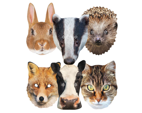 British Animals Variety 2D Card Party Masks 6 Pack