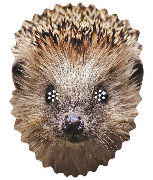 Hedgehog 2D Animal Single Card Party Mask