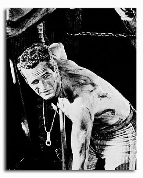 (SS247442) Paul Newman  Cool Hand Luke Movie Photo