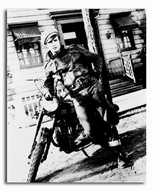 (SS250471) Marlon Brando  The Wild One Movie Photo