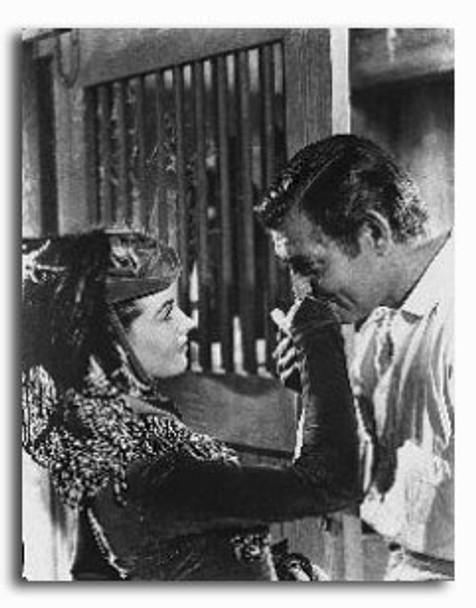 (SS251069) Cast   Gone with the Wind Movie Photo