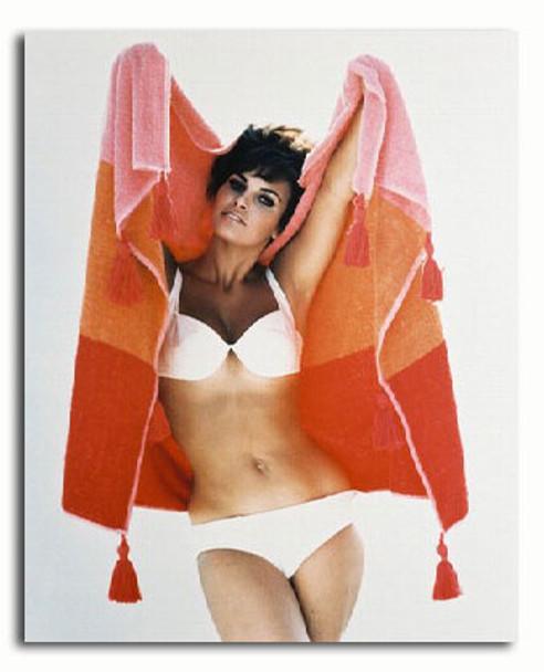 (SS317317) Raquel Welch Movie Photo