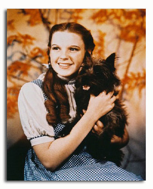 (SS336050) Judy Garland  The Wizard of Oz Movie Photo