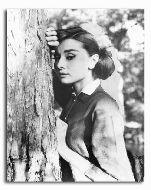 (SS2201264) Audrey Hepburn Movie Photo
