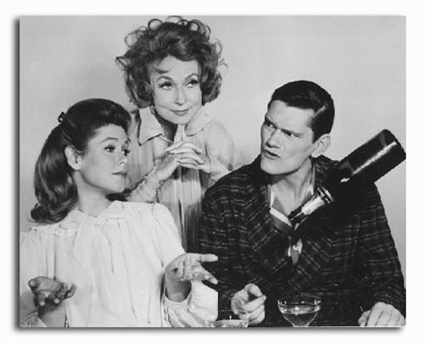 (SS2204085) Cast   Bewitched Television Photo