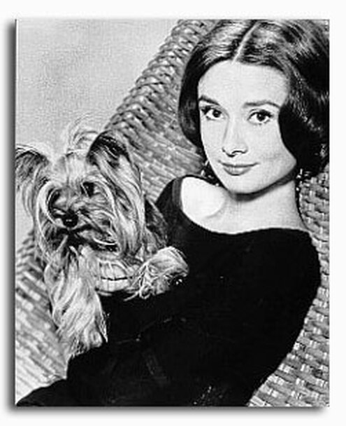 (SS2216422) Audrey Hepburn Movie Photo
