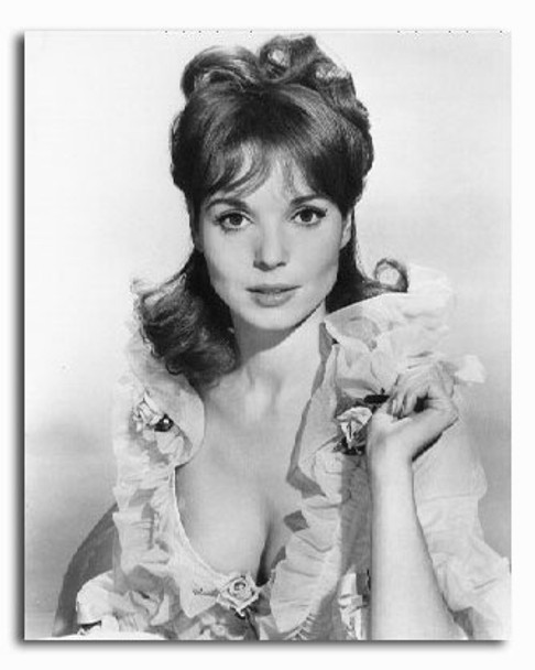 (SS2225574) Elsa Martinelli Movie Photo