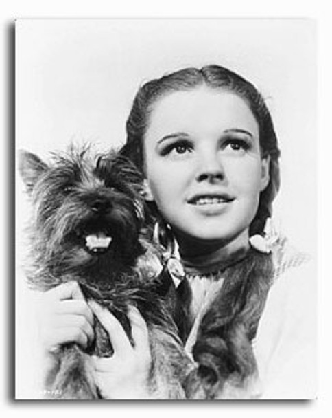 (SS2234778) Judy Garland  The Wizard of Oz Movie Photo