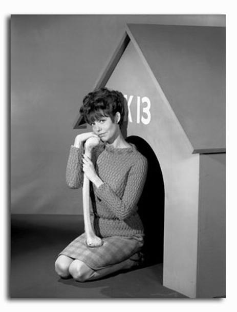 (SS2265081) Barbara Feldon  Get Smart Movie Photo