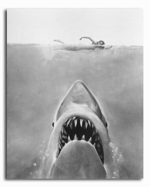 (SS2313337)  Jaws Movie Photo