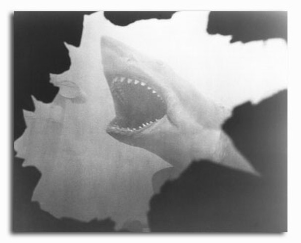 (SS2313389)  Jaws Movie Photo