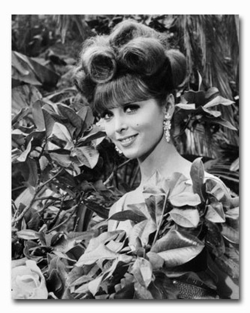 (SS2315521) Tina Louise  Gilligan's Island Television Photo