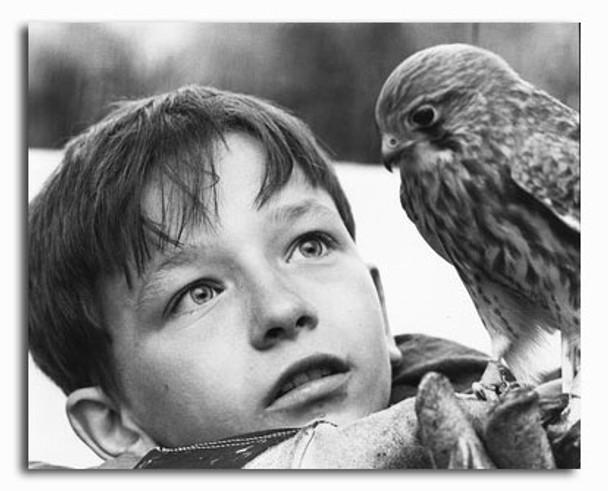 (SS2322164) David Bradley  Kes Movie Photo