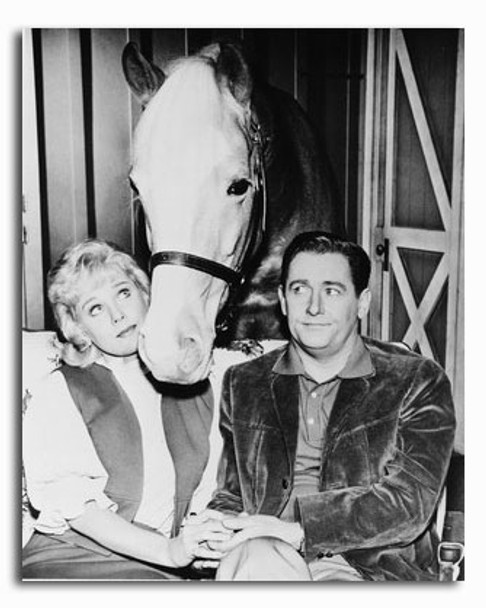 (SS2326636) Mr. Ed Movie Photo