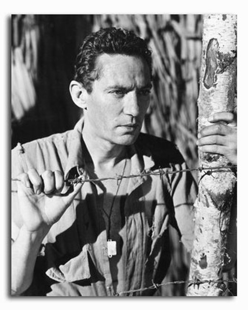 (SS2334215) Peter Finch Movie Photo