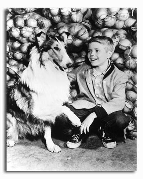 (SS2336139) Tommy Rettig  Lassie Television Photo