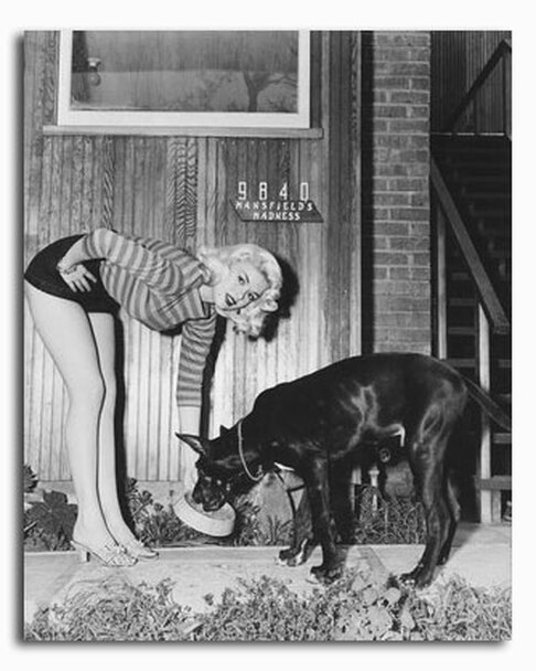 (SS2337634) Jayne Mansfield Music Photo