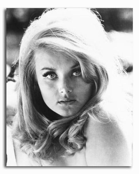 (SS2423785) Barbara Bouchet Movie Photo
