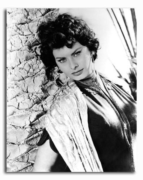 (SS2426216) Sophia Loren Movie Photo
