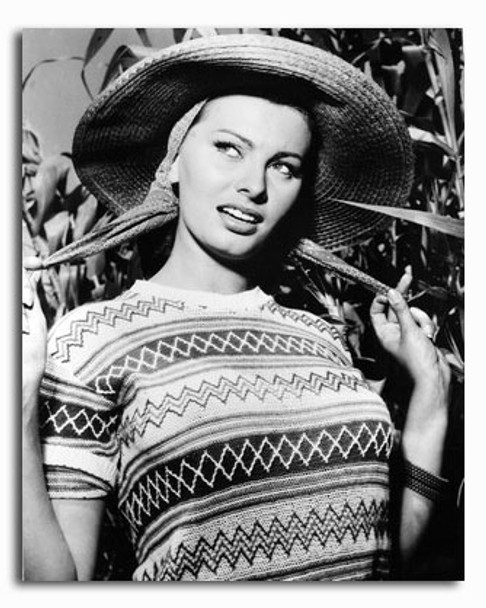 (SS2426268) Sophia Loren Movie Photo