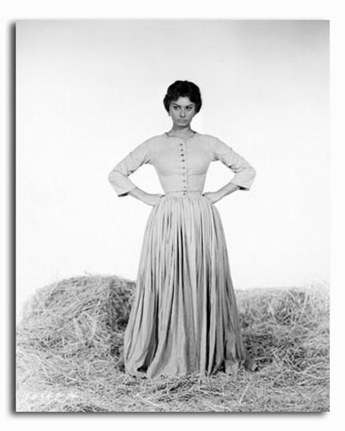 (SS2426281) Sophia Loren Movie Photo
