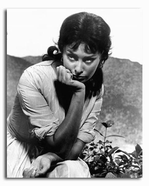 (SS2426294) Sophia Loren Movie Photo