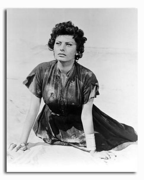 (SS2426307) Sophia Loren Movie Photo
