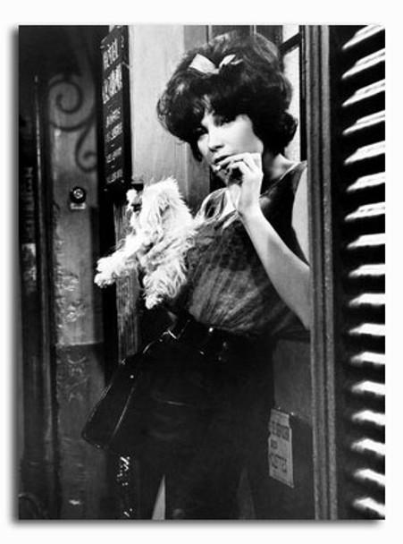 (SS2426606) Shirley MacLaine  Irma la Douce Movie Photo