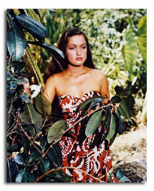 (SS3035110) Dorothy Lamour Movie Photo
