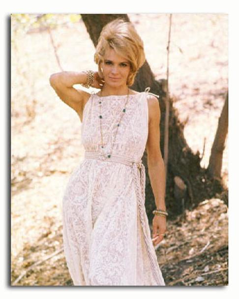 (SS3360331) Angie Dickinson Movie Photo