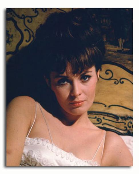 (SS3382769) Jean Seberg Movie Photo