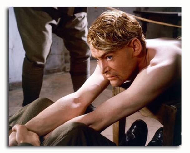 (SS3410693) Peter O'Toole Movie Photo