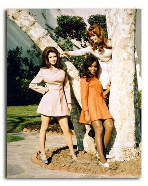 (SS3474042) Cynthia Myers  Beyond the Valley of the Dolls Movie Photo