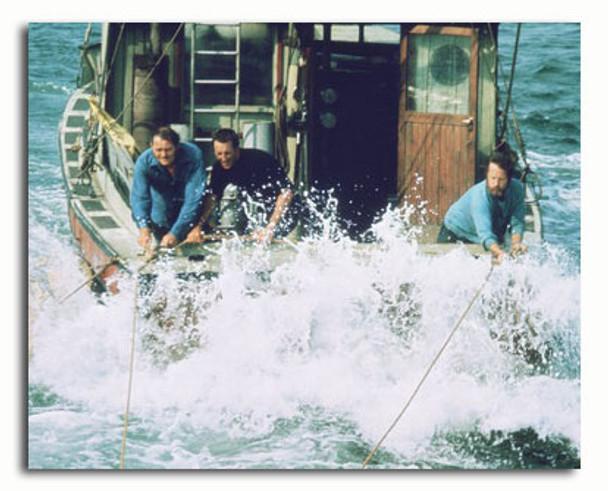 (SS3498599) Cast   Jaws Movie Photo