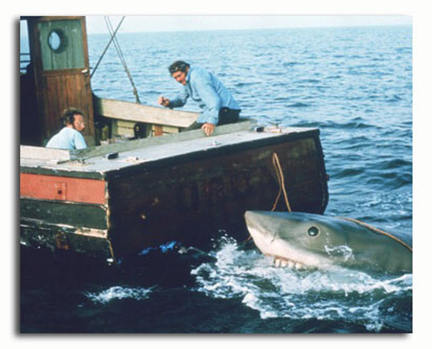 (SS3498716) Cast   Jaws Movie Photo