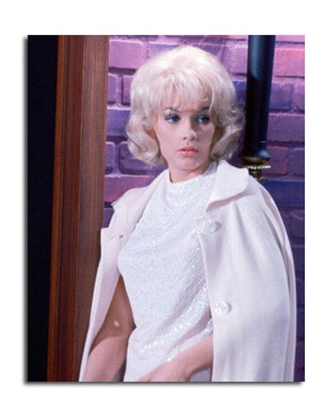 Stella Stevens Movie Photo (SS3615352)